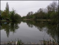 The Delves Long Pond