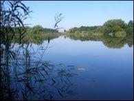 Motorway Pond