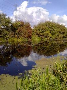 Lincolnshire Drain