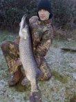 Willen Lake 29lb 4oz Pike