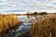 Willen Lake Image by Steven j Gibbs