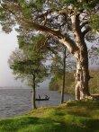 Lake of Menteith Fishing