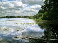 Wilstone Reservoir Image by www.gerald-massey.org.uk