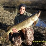 Patch 19lb 1oz pike