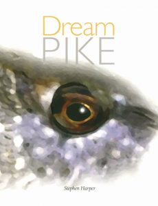 Dream Pike
